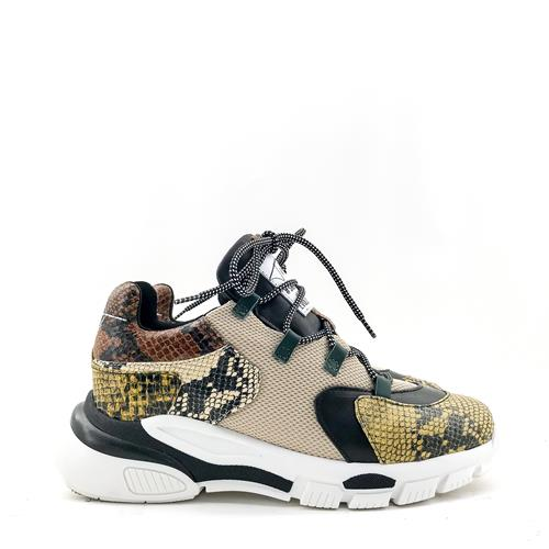 Toral - Sneakers - 11101 Snake Multi - Photo 1